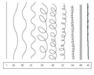 présentation des différentes textures du cheveu nécessaire pour avoir les 360 waves