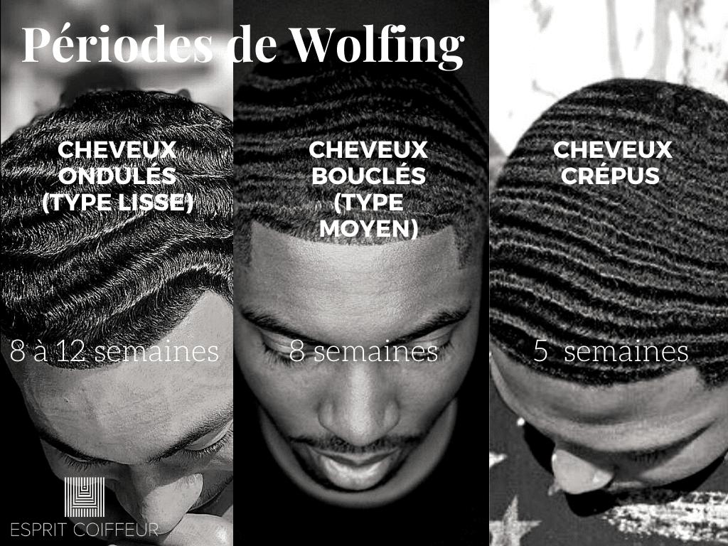 Tableau explicatif sur les durées de processus de wolfing en fonction du type de cheveux