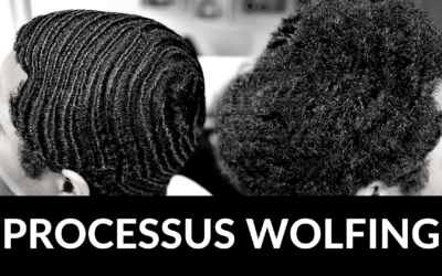 360 Waves : Le Wolfing